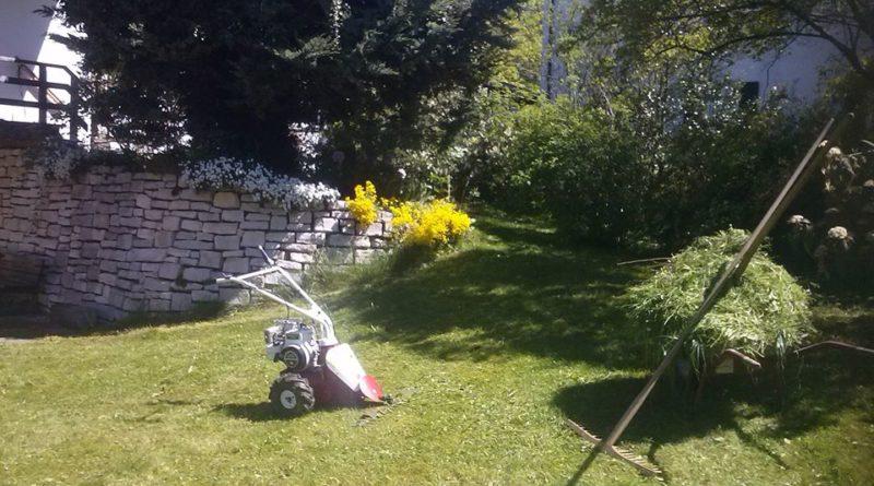 Rasenmähen und Pflege